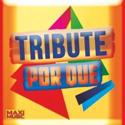 Tribute - Por Que